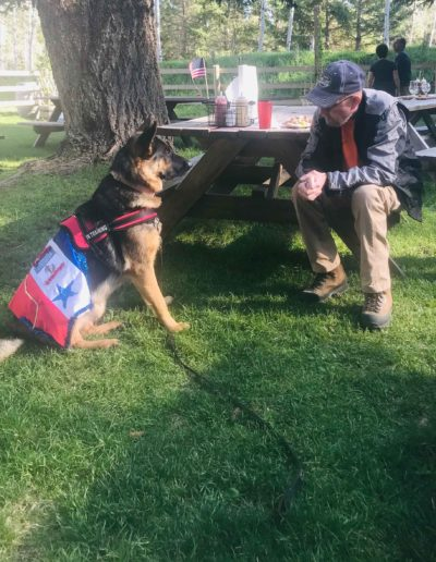 patriotic dog and veteran bonding