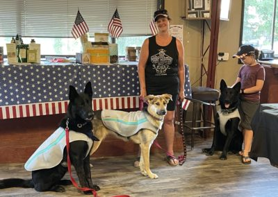 dogs staying cool in cooling vests
